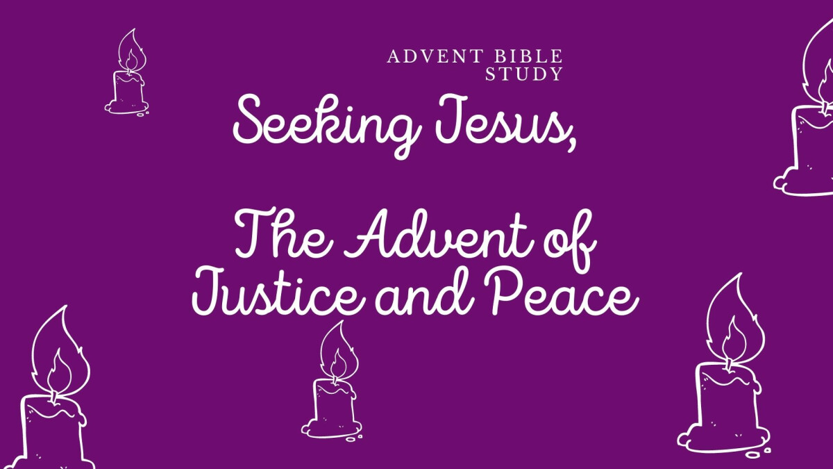 Seeking Jesus, The Advent of Justice & Peace study